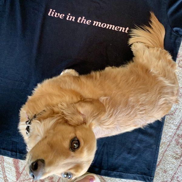 Cancer T Shirt